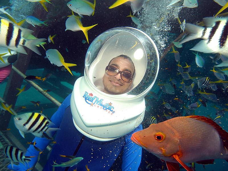 reef_magic_cruise_13.jpg