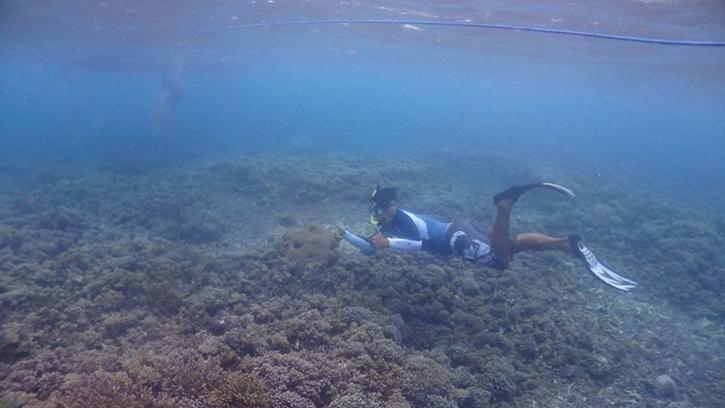 snorkelingsafari10.jpg