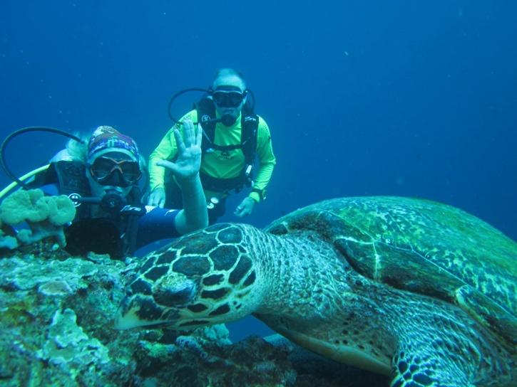snorkelingsafari9.jpg