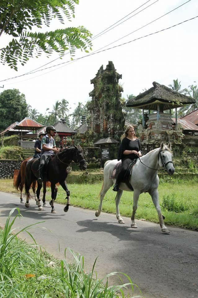 horseriding7.jpg