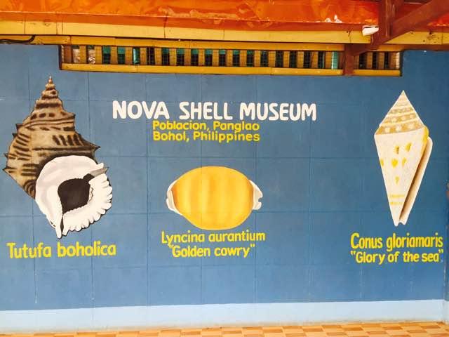 shellmuseum5.jpg