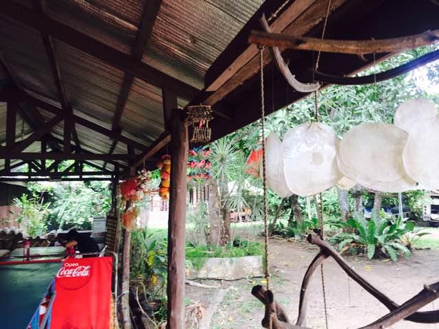 shellmuseum6.jpg