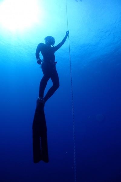 freediving001.jpg