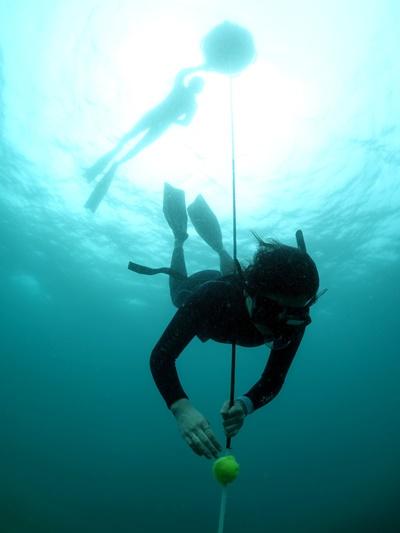 freediving003.jpg