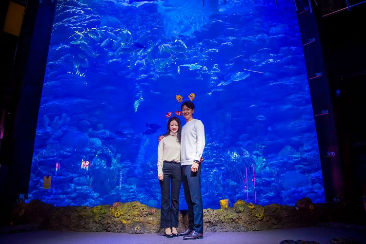 busan-sea-life-aquarium05.jpg