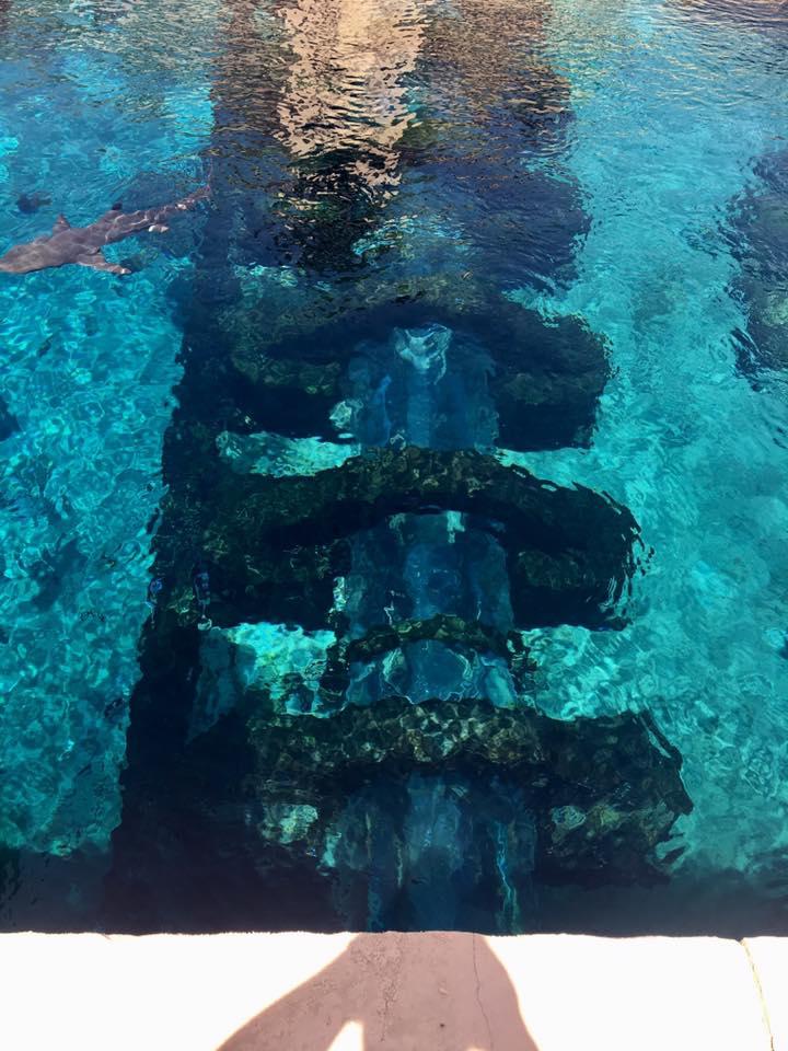 aquaadventure2.jpg