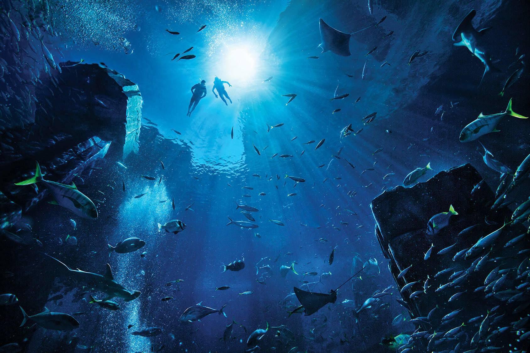 aquaadventure6.jpg