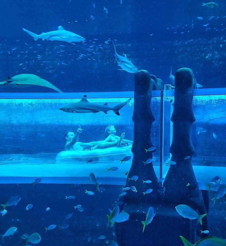 aquaadventure7.jpg