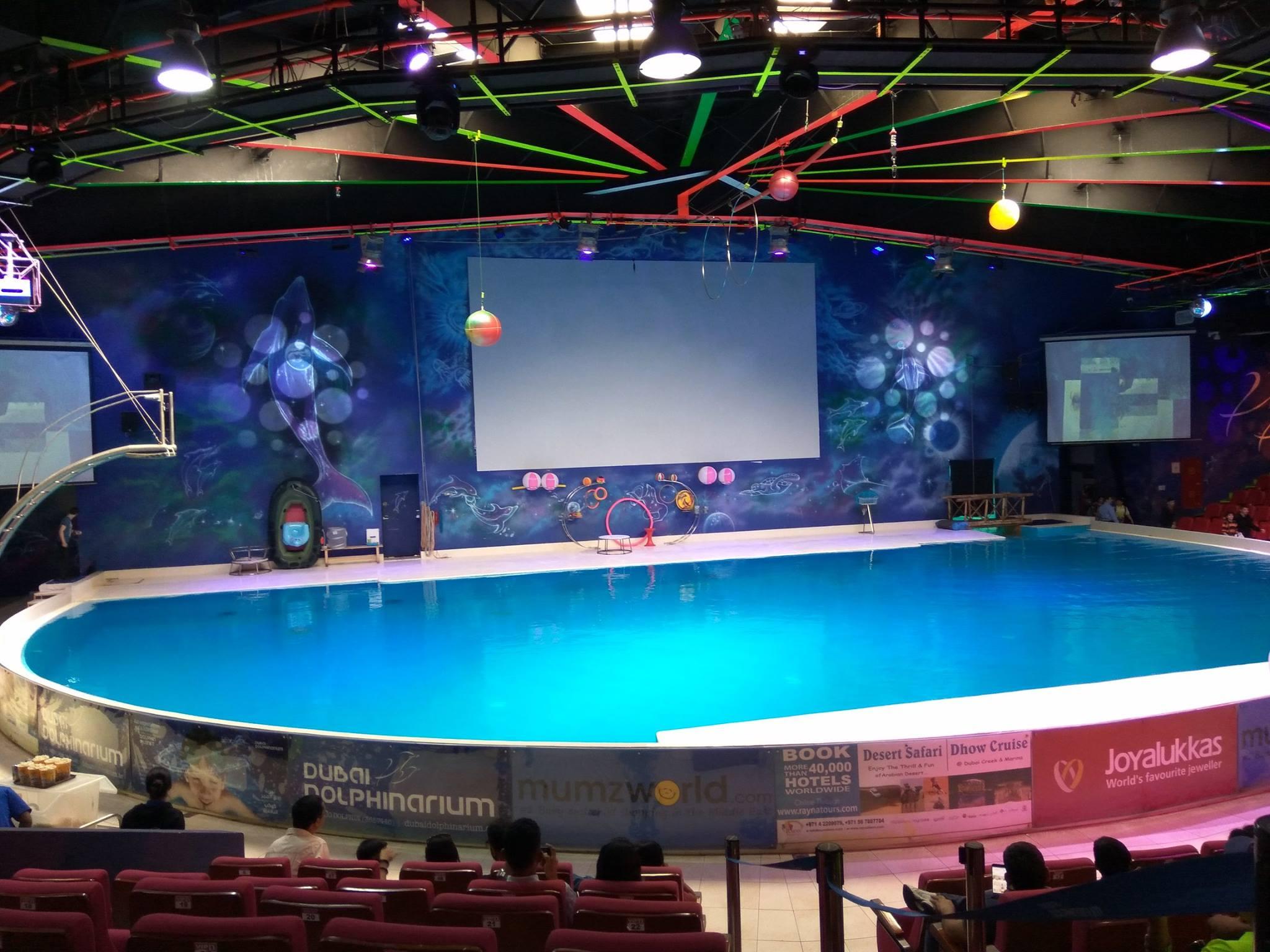 dolphinarium3.jpg