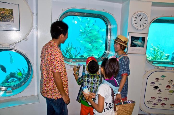 fisheye25.jpg
