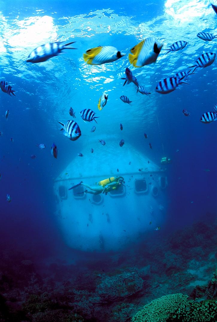 fisheye31.jpg
