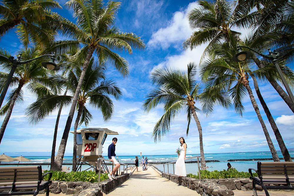 hawaiisnap.jpg