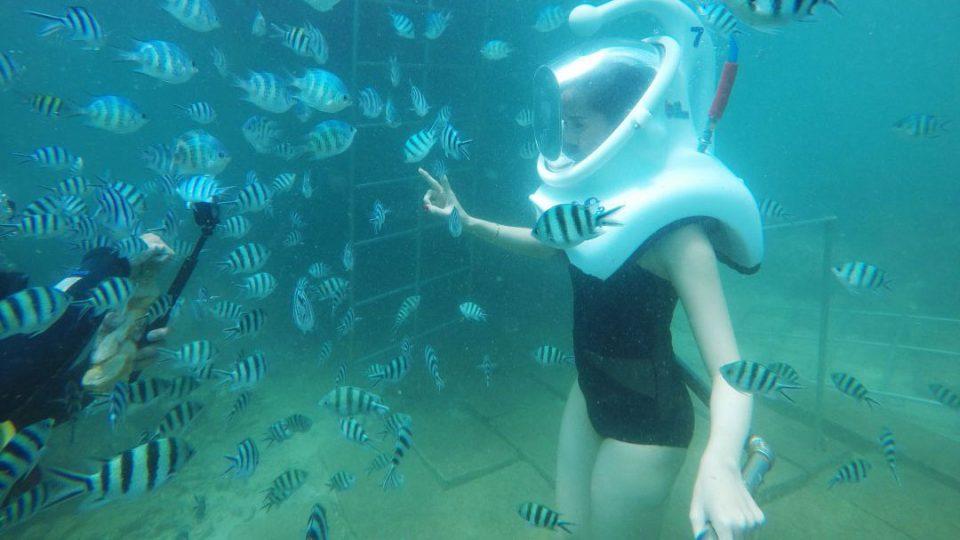 underwater(9).jpg