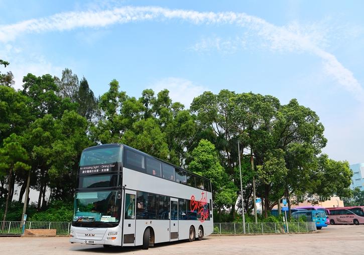 crystalbus6.jpg