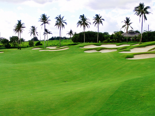 golfinmanila12.jpg
