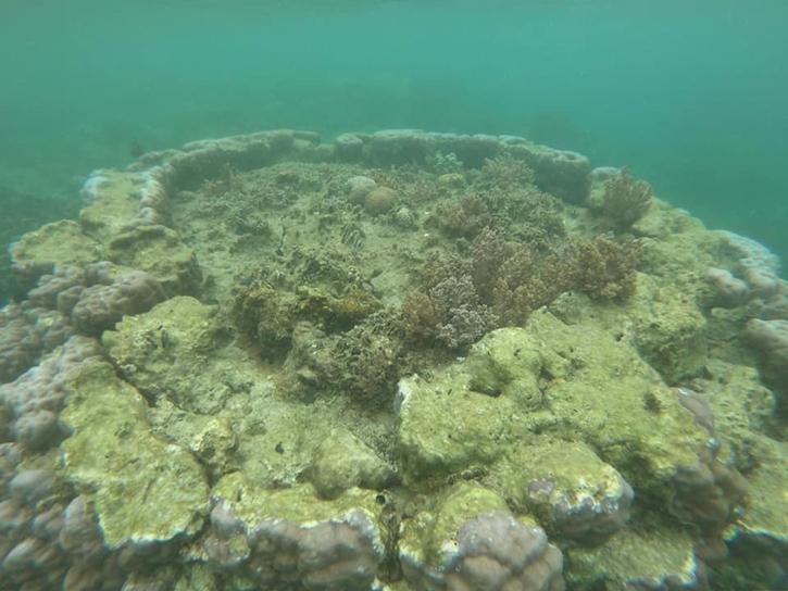 shipwreck13.jpg