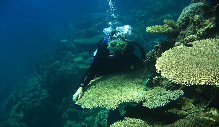 shipwreck15.jpg