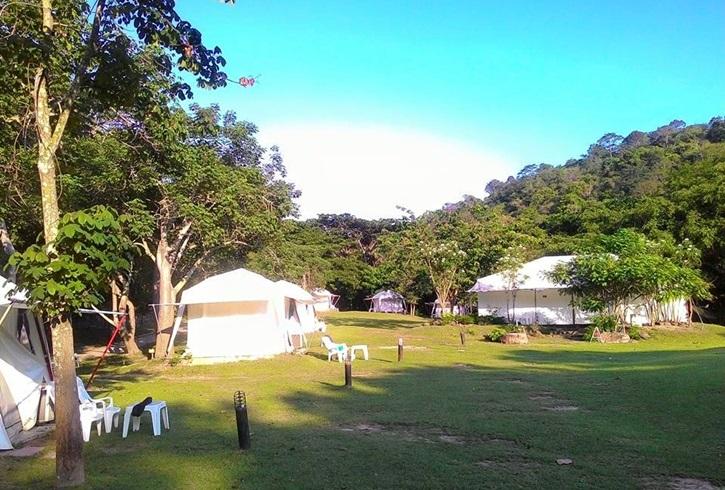725490_camping_01.jpg