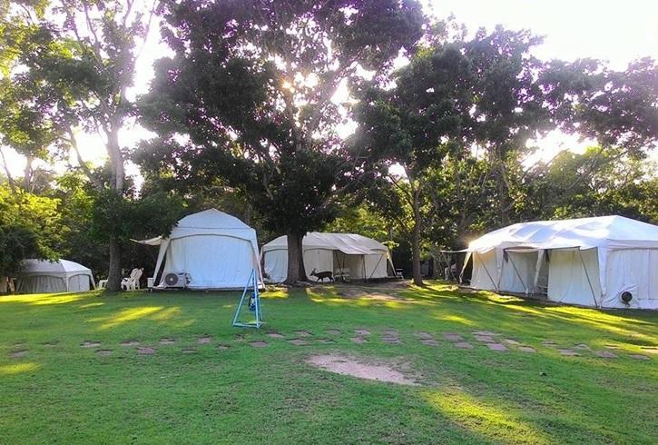 725490_camping_02.jpg