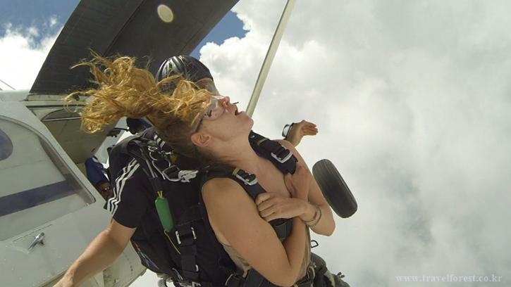 skydive.png