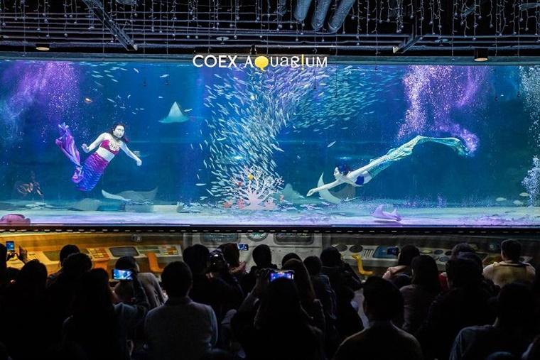 aquarium004.jpg