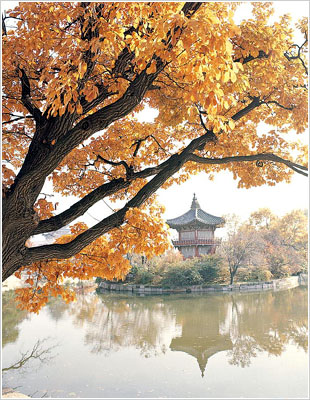 gyeongbokgungpalace-1.jpg