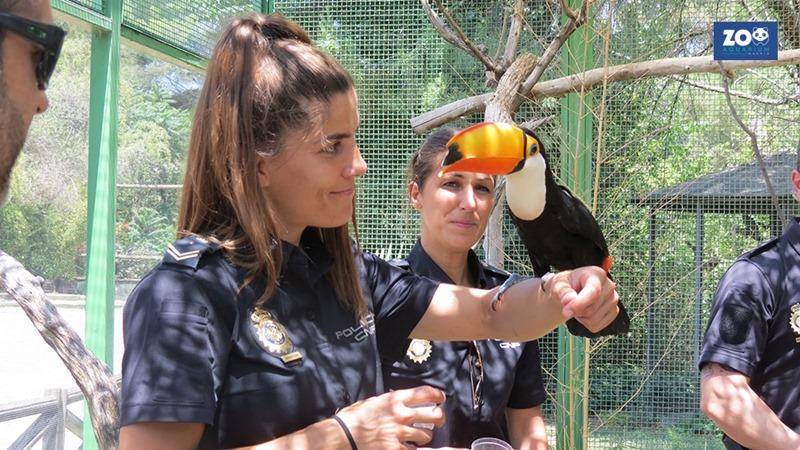 exoticbird800.jpg